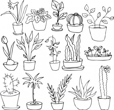 line drawing home plants