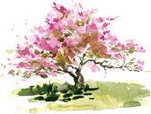 Fotografie cherry blossom tree
