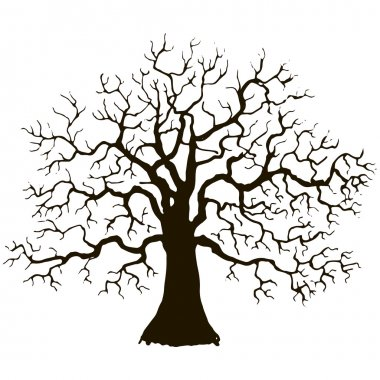 tree without leaves silhouette
