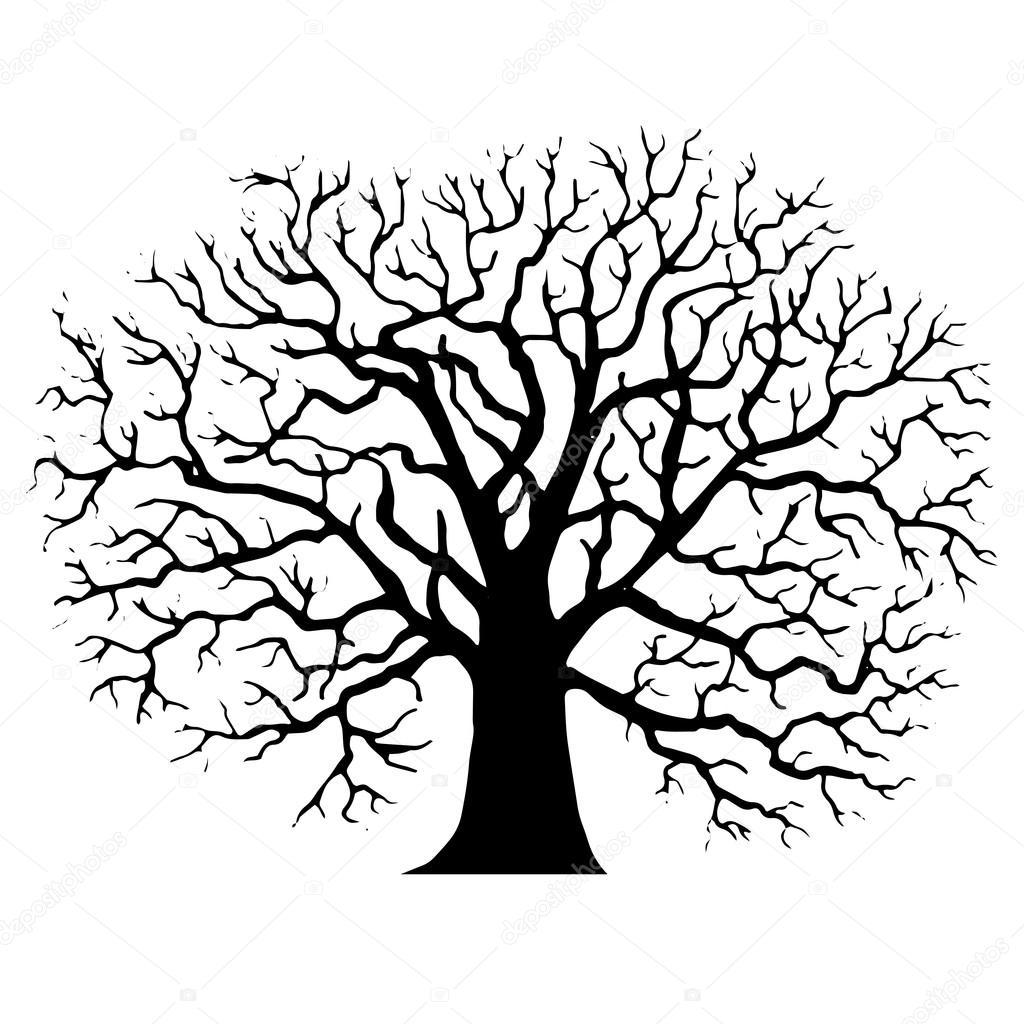 arbre sans feuilles silhouette image vectorielle - Arbre Sans Feuille