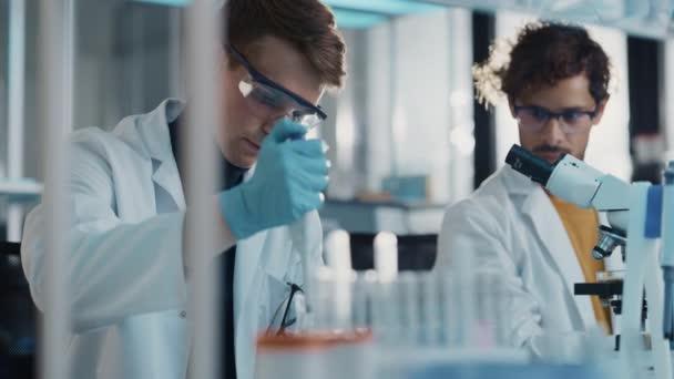 Laborban dolgozó fiatal tudós