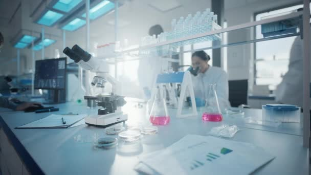 Medical Laboratory Scientists Working