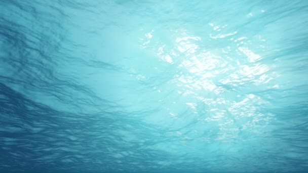 Víz alatti táj, a nap sugarai besütött a víz felszínén