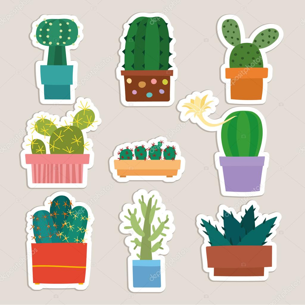cactus collection vector illustration