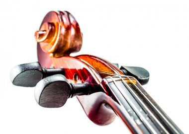 Violine head, Violin scroll close up