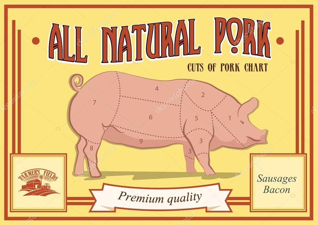 Pork Cuts Diagram Vector Illustration For Your Design Retro Poster