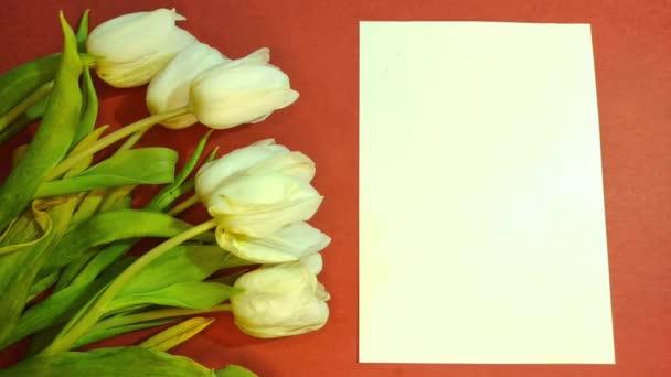 Kytice krásných tulipánů a list papíru na oranžovém pozadí horní pohled. Pozadí Dne matek, Mezinárodní den žen.Stop pohybu 4K záběry.