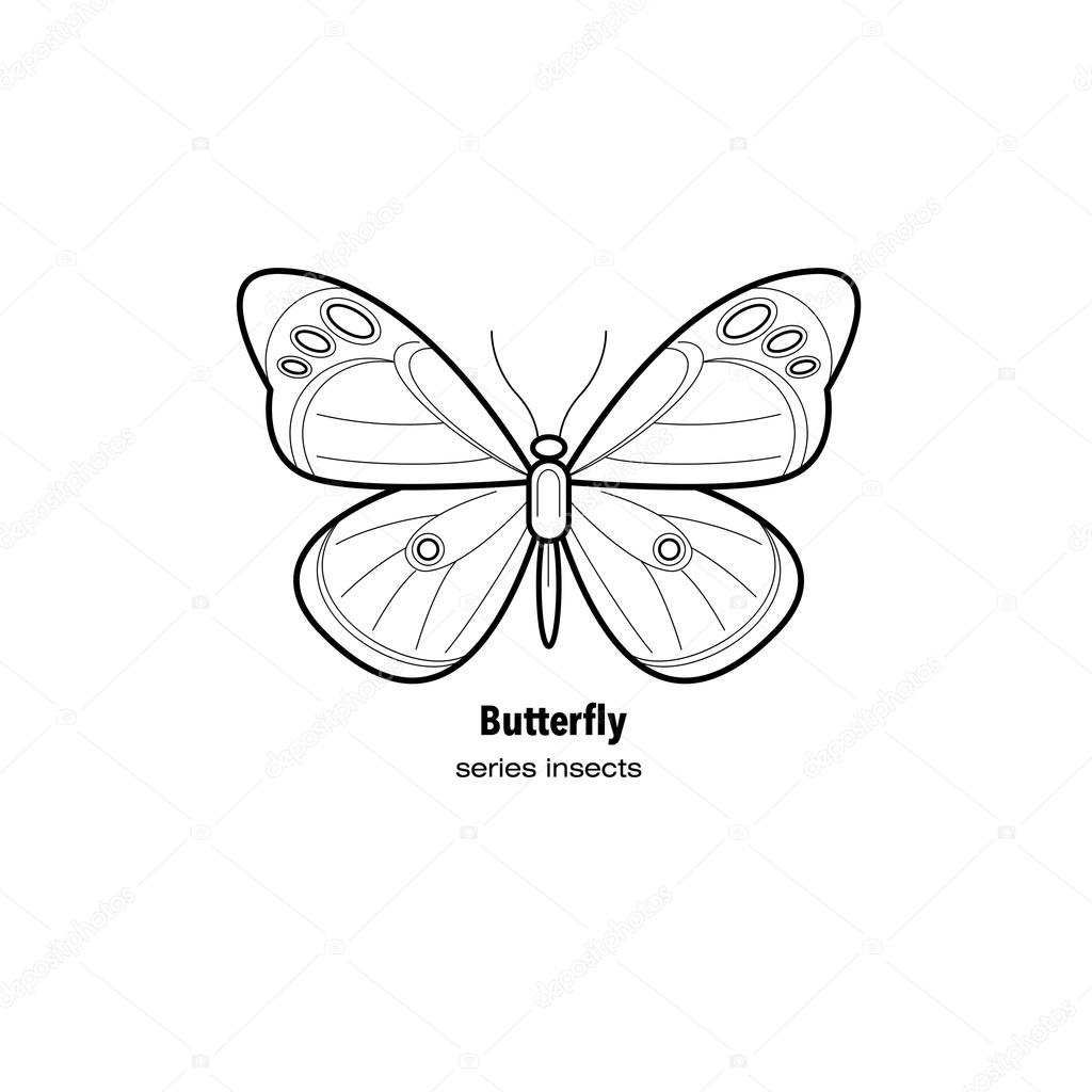 Vector Image insect butterfly.
