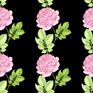 Flower seamless pattern with roses.