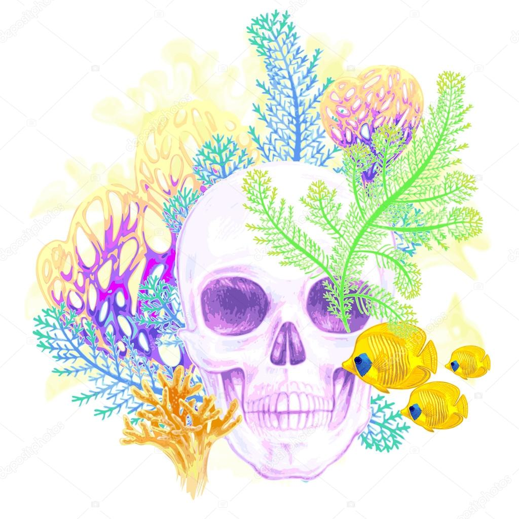 Composition with Skull, coral and fish on a white background.