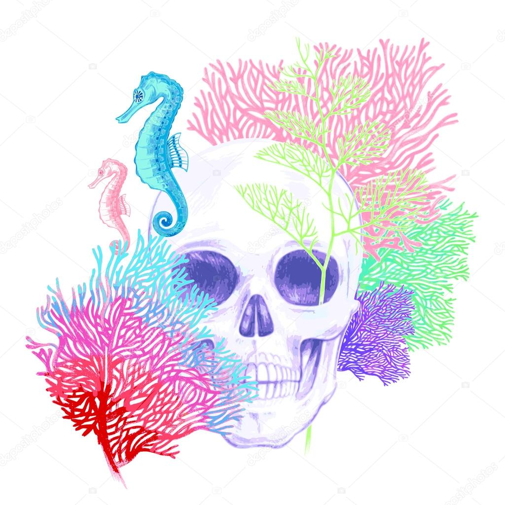 Composition with Skull, corals and sea horses on a white backgro