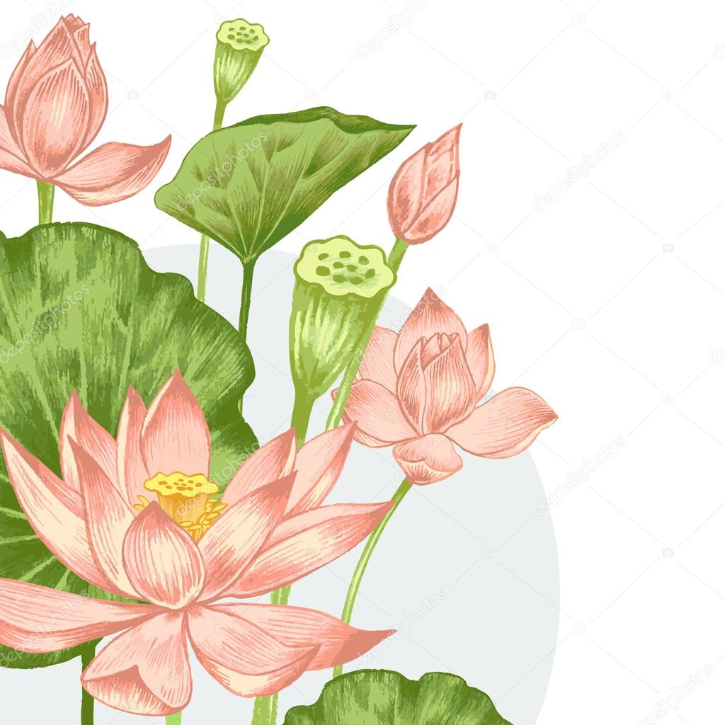 Illustration with exotic flowers.