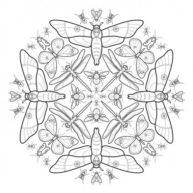 Vector illustration ornament from insects.