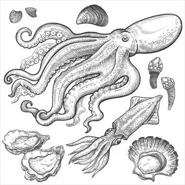 Set hand drawings of seafood.