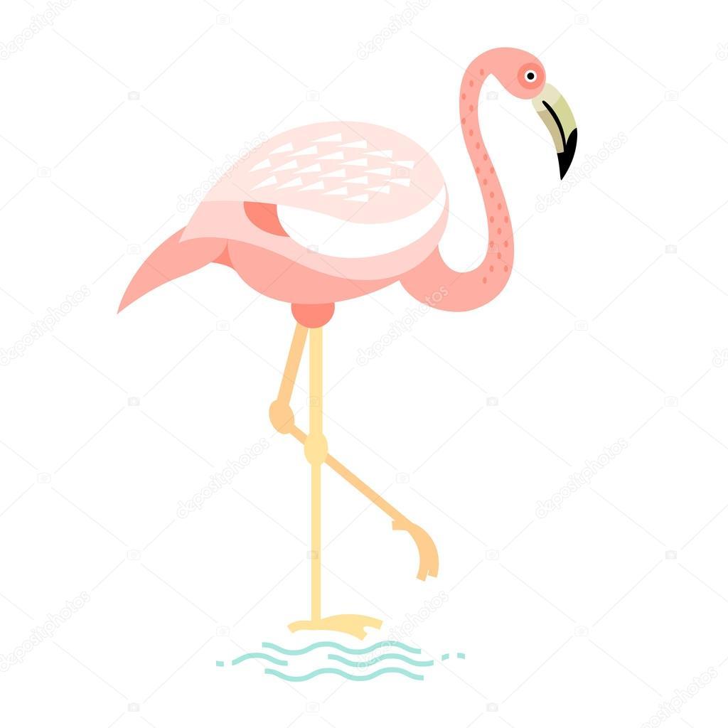 ilustração em vetor de flamingo de pássaro vetores de stock
