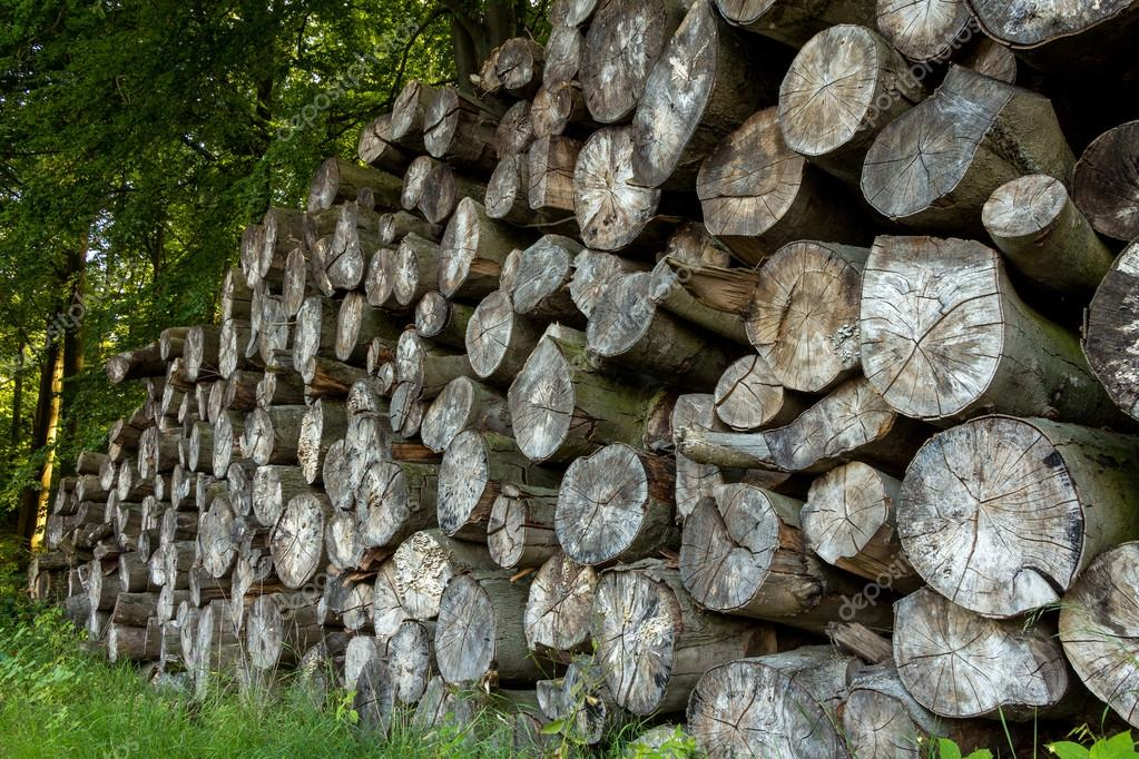timbers stack