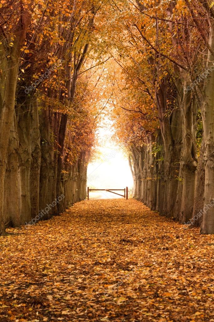 Inspiración para viajar a los parques naturales de España