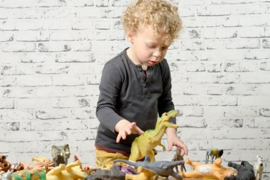 a little child plays with toys animals
