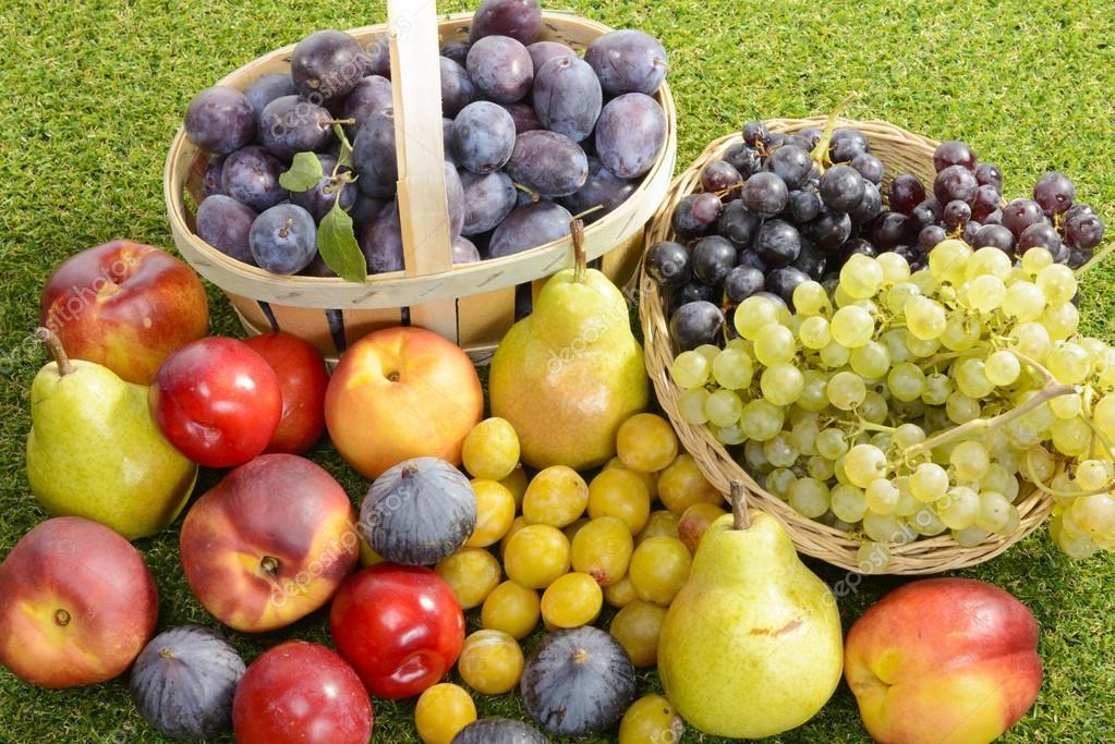 Szőlő Gyümölcsök: Más Szezonális Gyümölcsök, A Szilva, A Körte, A