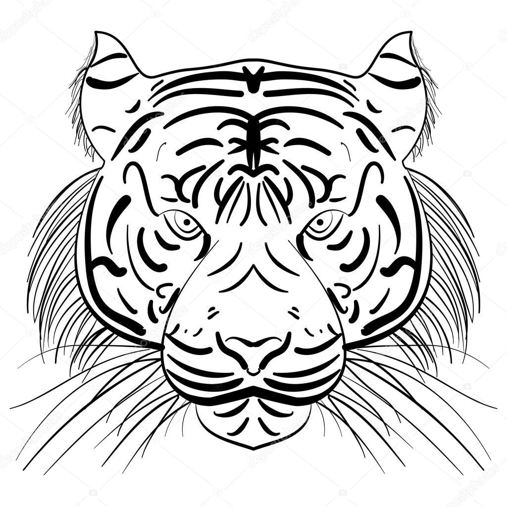 Viso Stilizzato Di Vettore Della Tigre Di Schizzo Di Inchiostro