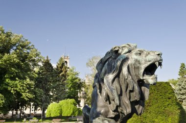 Statue of a lion  in city center of Ruse, Bulgaria