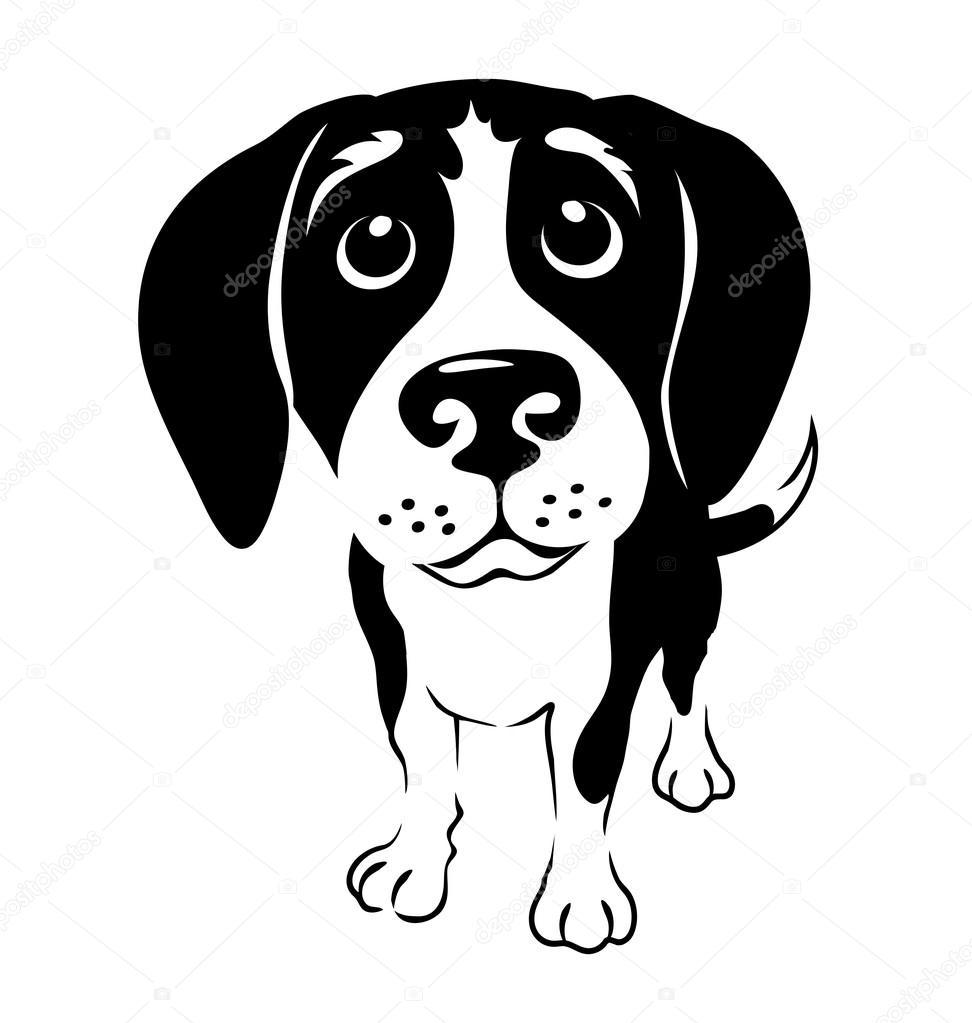 Ilustracion Blanco Y Negro De Beagle Gracioso Archivo Imagenes