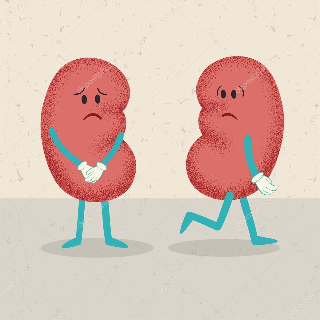 Retro-Cartoon 2 Nieren. Konzept eine Niere zu verlieren ...