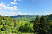 Krásná krajina v horách v létě. Česká republika - Bílé Karpaty - Evropa