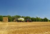 Kombajn zemědělství stroj sběr zlatá zralé kukuřičné pole. Traktor - tradiční letní pozadí s industriálním tématem