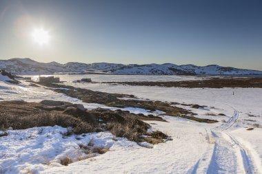 Winter northern landscape