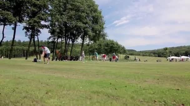 Venkovní rekreace Životní styl Aktivita Profesionální golf Hrát Muž Kavkazský