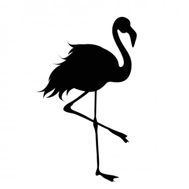 Vector silhouette of flamingo on white background. icon