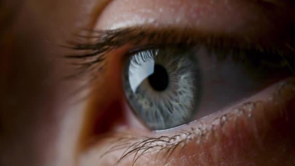 Detailní záběry ženského šedého oka