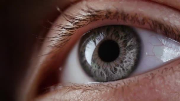 Footage of looking female grey eye