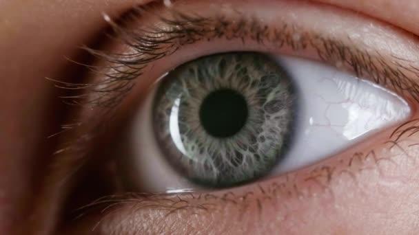 Női szürke szem forgatása