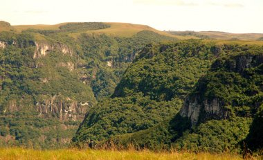 Canyon in southern Brazil
