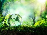 kristály gömb a moha erdő - környezetvédelmi koncepció