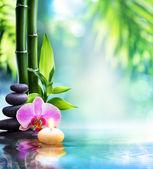 lázně zátiší - svíčka a kámen s bambusem v přírodě na vodě