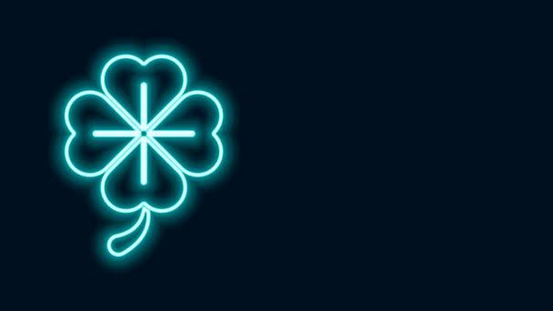 Zářící neonová čára Ikona čtyřlístkového jetele izolovaná na černém pozadí. Šťastný den svatého Patrika. Grafická animace pohybu videa 4K