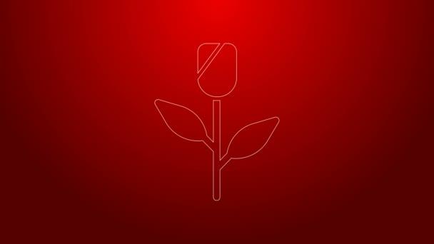 Zöld vonal Virág rózsa ikon elszigetelt piros háttérrel. 4K Videó mozgás grafikus animáció
