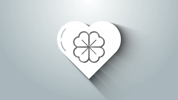 Bílé srdce se čtyřmi listy jetele ikony izolované na šedém pozadí. Šťastný den svatého Patrika. Grafická animace pohybu videa 4K