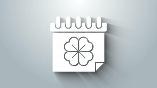 Bílé Saint Patricks den s ikonou kalendáře izolované na šedém pozadí. Čtyřlístek jetele. Datum 17. března. Grafická animace pohybu videa 4K