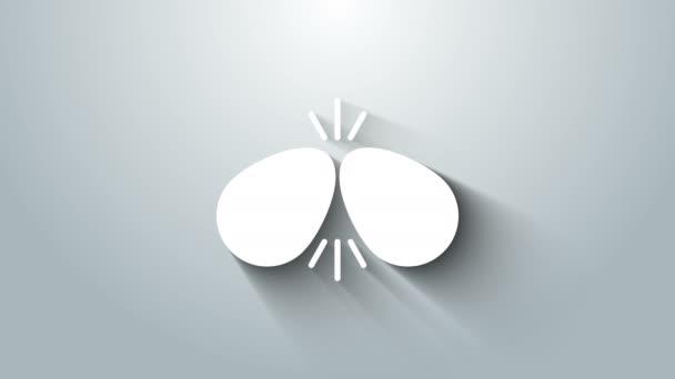 Weiße Ostereier auf grauem Hintergrund. Zwei Eier prallen aufeinander. Frohe Ostern. 4K Video Motion Grafik Animation