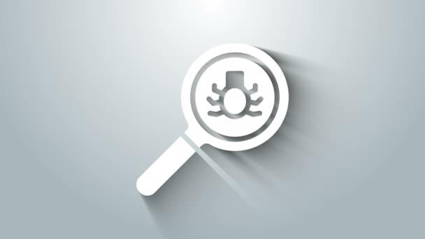 Fehér Bolha kereső ikon elszigetelt szürke háttér. 4K Videó mozgás grafikus animáció