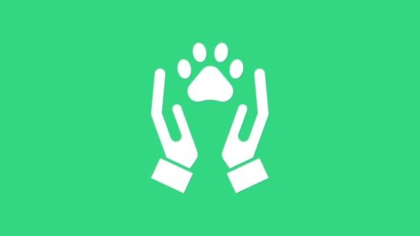 Fehér Kezek állatokkal lábnyom ikon elszigetelt zöld alapon. Mancs a szívben. Szeretettel az állatoknak. 4K Videó mozgás grafikus animáció