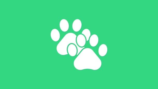 Fehér Mancs nyomat ikon elszigetelt zöld alapon. Kutya- vagy macskamancs lenyomat. Állati nyom. 4K Videó mozgás grafikus animáció