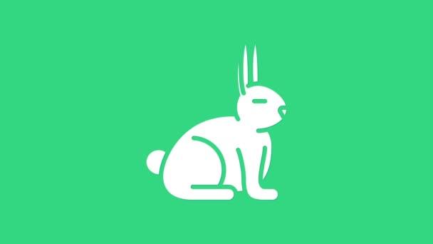 White Rabbit Symbol isoliert auf grünem Hintergrund. 4K Video Motion Grafik Animation