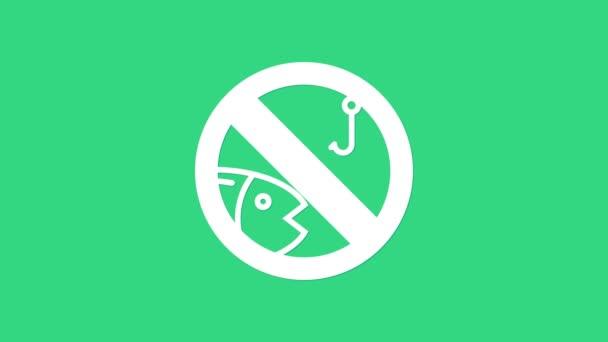 Weiß Kein Angelsymbol isoliert auf grünem Hintergrund. Verbotsschild. 4K Video Motion Grafik Animation