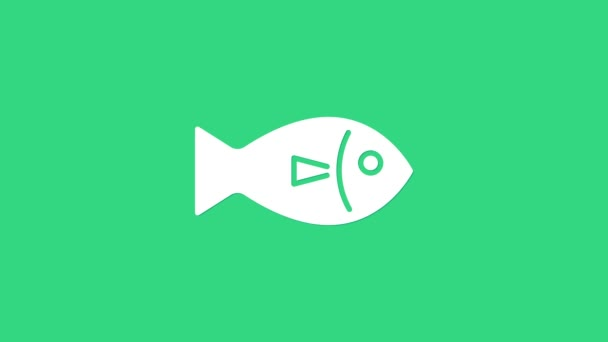 Fehér hal ikon elszigetelt zöld alapon. 4K Videó mozgás grafikus animáció