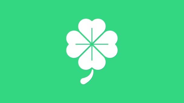Ikona jetele bílého čtyřlístku izolovaná na zeleném pozadí. Šťastný den svatého Patrika. Grafická animace pohybu videa 4K